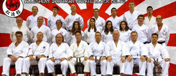 norwin ninjas karate staff