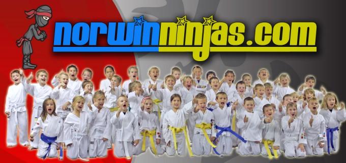 norwin ninjas class