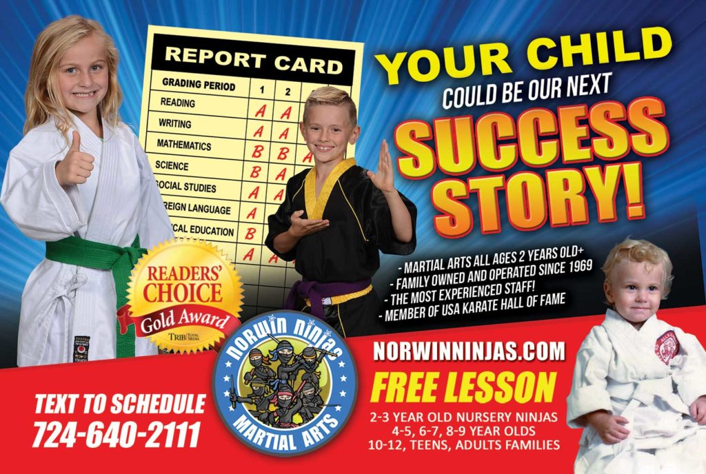 norwin ninjas karate school